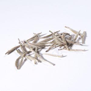 White Tip Silver Needle
